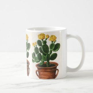 Fleurs vintages de cactus, usines succulentes de mug blanc