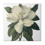 Fleurs vintages, fleur blanche de floraison de mag carreau en céramique