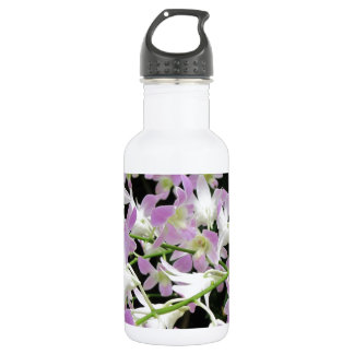 Florabunda lilas et blanc