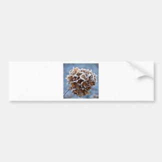 Floraison avec des cristaux de glace autocollant pour voiture