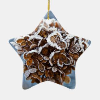 Floraison avec des cristaux de glace ornement étoile en céramique