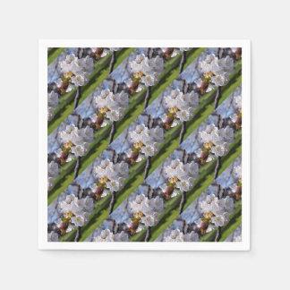 Floraisons de pomme blanc au printemps serviettes jetables