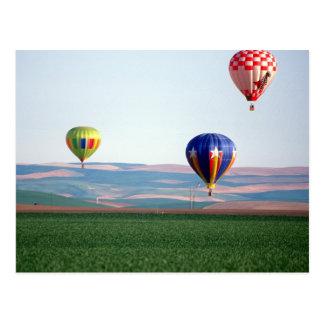 Flotteur chaud coloré de ballons à air au-dessus cartes postales