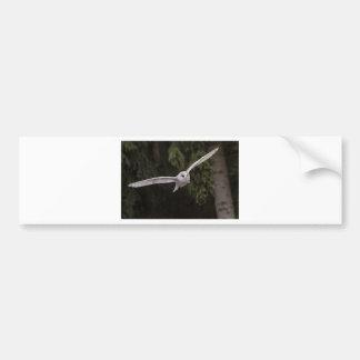 Flying owl autocollant pour voiture