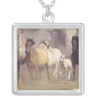 Fonctionnement de chevaux sauvages pendentif carré
