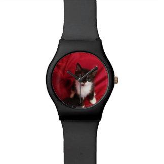Foofy noir et blanc le chaton montres