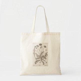 Forager vintage d'herbe d'illustration de sac