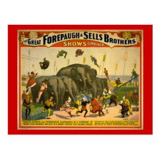 Forepaugh et affiche de cirque d'éléphants de carte postale