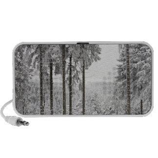 Forêt à feuillage persistant en hiver haut-parleur iPod