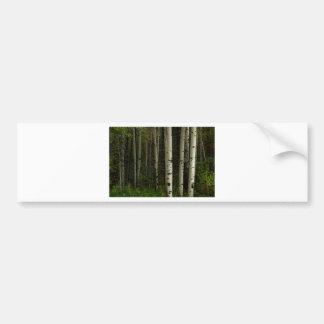 Forêt blanche autocollant de voiture