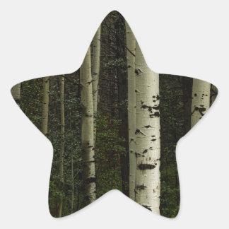 Forêt blanche sticker étoile