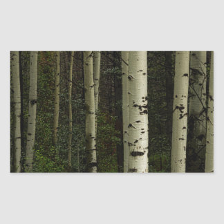 Forêt blanche sticker rectangulaire