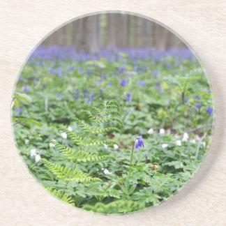 Forêt bleue de cloche dessous de verre