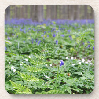 Forêt bleue de cloche sous-bock