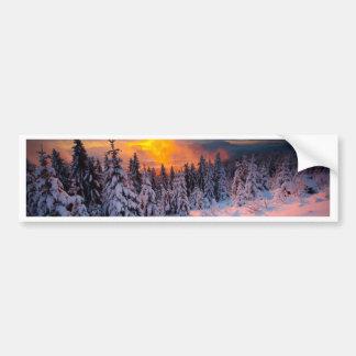 Forêt d hiver autocollant pour voiture