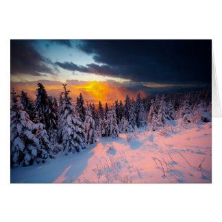 Forêt d hiver cartes de vœux