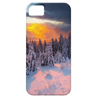 Forêt d hiver coque iPhone 5