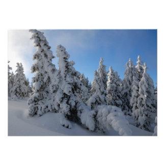Forêt d hiver faire-part personnalisables