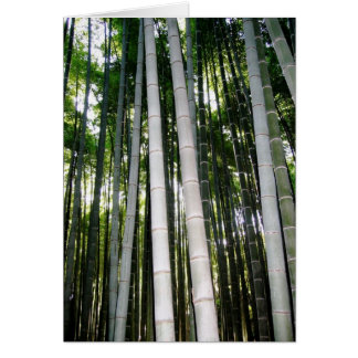 Forêt de bambou d'Arashiya Cartes De Vœux