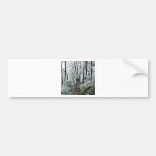 Forêt de Freezed de scène d'hiver Adhésifs Pour Voiture