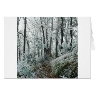 Forêt de Freezed de scène d'hiver Carte De Vœux