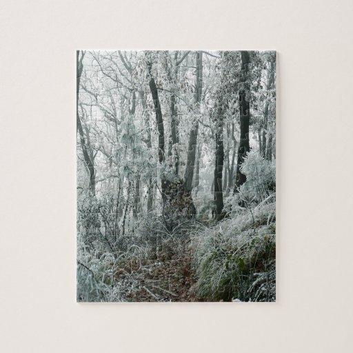 Forêt de Freezed de scène d'hiver Puzzle