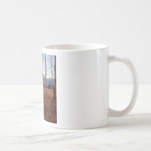 Forêt de Sun d'hiver d'arbres de nature Mug À Café
