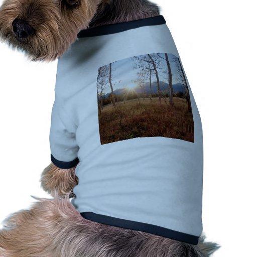 Forêt de Sun d'hiver d'arbres de nature Tee-shirt Pour Animal Domestique