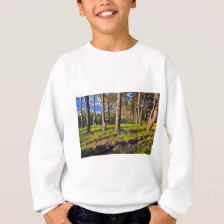 Forêt d'été dans la lumière de soir sweatshirt