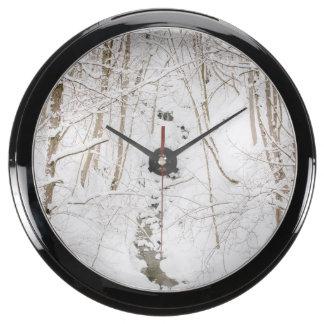 Forêt d'hiver avec un courant aqua clock