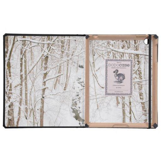 Forêt d'hiver avec un courant coques iPad