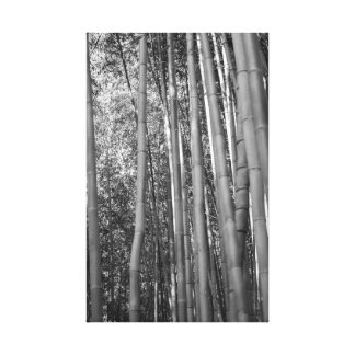 Forêt en bambou toile