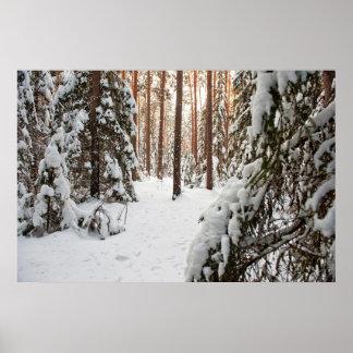 Forêt en hiver affiche