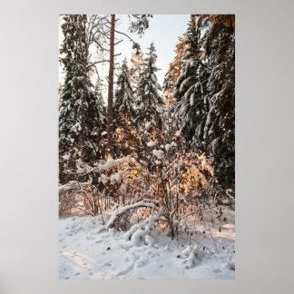 Forêt en hiver posters