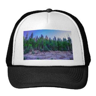Forêt et ciel de vallée de Yosemite Casquette De Camionneur