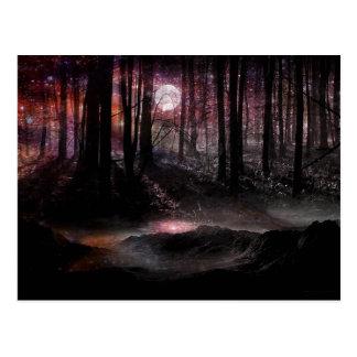 Forêt foncée dans la carte postale de cosmos