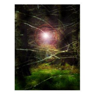 Forêt mystique carte postale