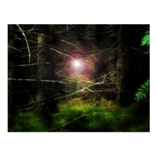 Forêt mystique cartes postales