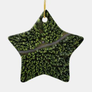 Forêt nordique : édition verte ornement étoile en céramique