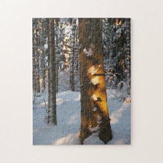 Forêt pendant l'hiver puzzles