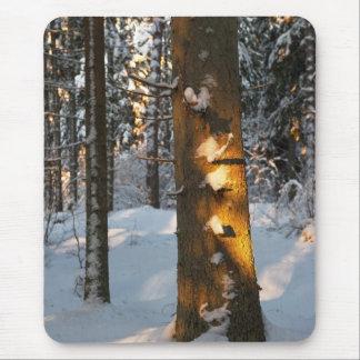 Forêt pendant l'hiver tapis de souris