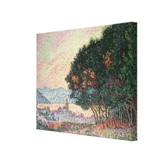 Forêt près de St Tropez, 1902 Toiles