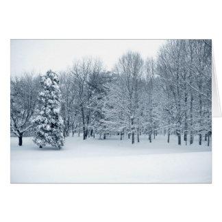 Forêt tranquille carte de vœux
