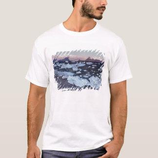 Formation d'iceberg sur la plage t-shirt