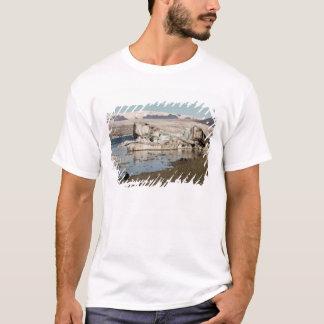 Formations 2 d'iceberg t-shirt