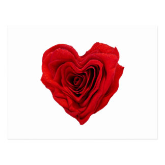 Forme rose de coeur - carte postale