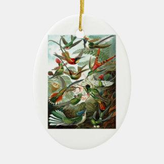 Formes 1899 d'art d'espèces de colibri de copie de ornement ovale en céramique