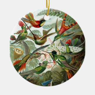 Formes 1899 d'art d'espèces de colibri de copie de ornement rond en céramique