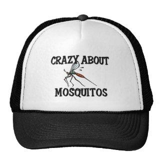 Fou au sujet des moustiques casquettes