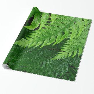 Fougères de jungle papier cadeau